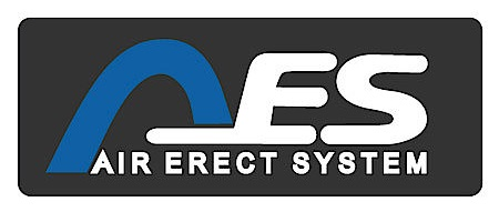 AES system